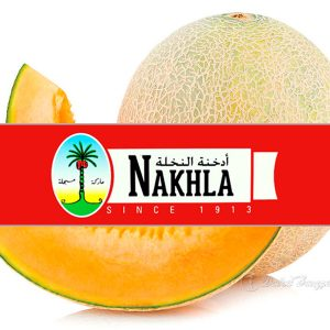 nakhla-new-sweet-melon-1